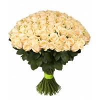 101 подмосковная персиковая роза