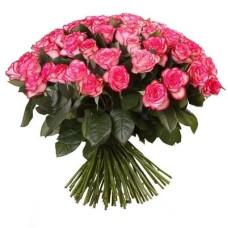 101 подмосковная розово-белая роза