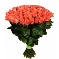 101 подмосковная коралловая роза