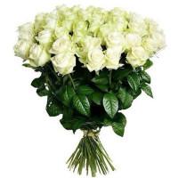 25 подмосковных белых роз