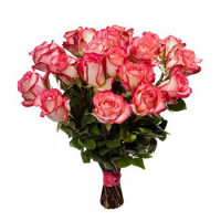 """25 розово-белых роз """"Джумилия"""""""