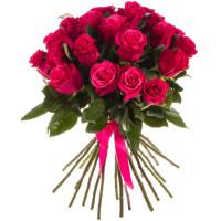 "25 малиновых роз ""Хот Шот"""