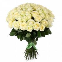51 подмосковная белая роза