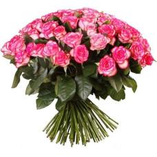 """51 розово-белая роза """"Джумилия"""""""