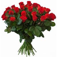 51 подмосковная алая роза