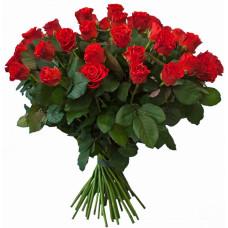 "51 алая роза ""Эль Торо"""
