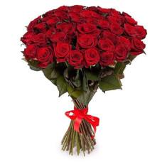 51 подмосковная бордовая роза