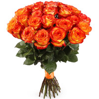 15 оранжевых роз (Эквадор)