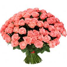 101 подмосковная розовая роза