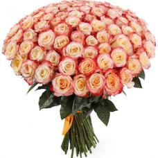 101 бело-коралловая роза (Эквадор)