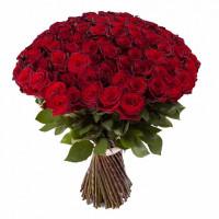 101 бордовая  роза (Эквадор)