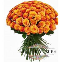 101 подмосковная оранжевая роза