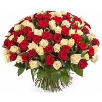 101 подмосковная роза микс: персиковая и бордовая
