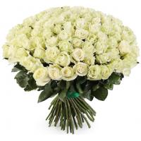 101 белая роза  (Эквадор)