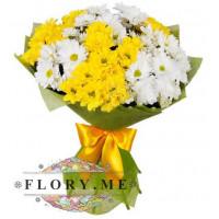15 кустовых хризантем: желтые + белые в упаковке с атласной ленточкой