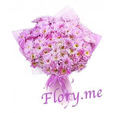 15 розовых кустовых хризантем