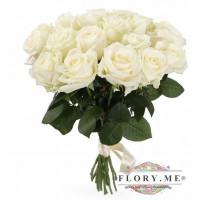 19 подмосковных белых роз