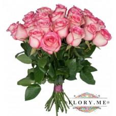 19 подмосковных двухцветных (розово-белых) роз