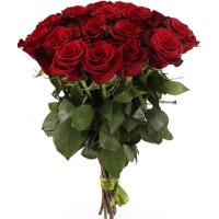 15 бордовых роз (Эквадор)