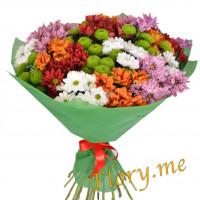17 кустовых хризантем Микс в упаковке с атласной ленточкой