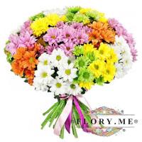 25 кустовых хризантем микс с атласной ленточкой