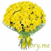25 желтых кустовых хризантем