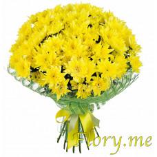 25 желтых кустовых хризантем в упаковке с атласной ленточкой