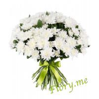 25 белых кустовых хризантем с атласной ленточкой