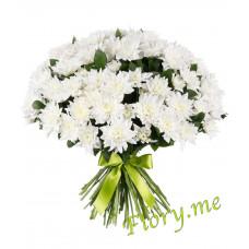 13 белых кустовых хризантем