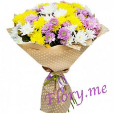 15 кустовых хризантем микс