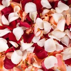 Пакет с лепестками роз малый