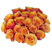 25 подмосковных оранжевых роз